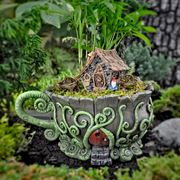 Display - Woodland Fiddleheads Tea Cup Planter with Red Door