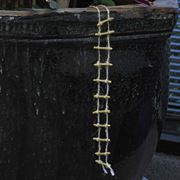 Fiddlehead Rope Ladder