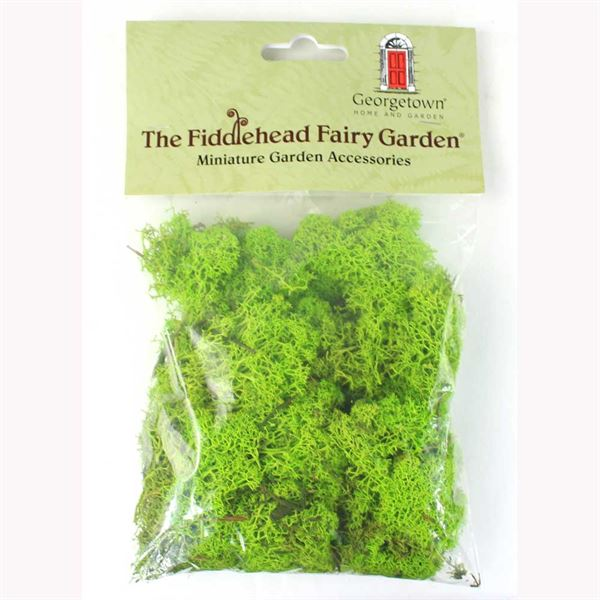 Green reindeer moss for scenery